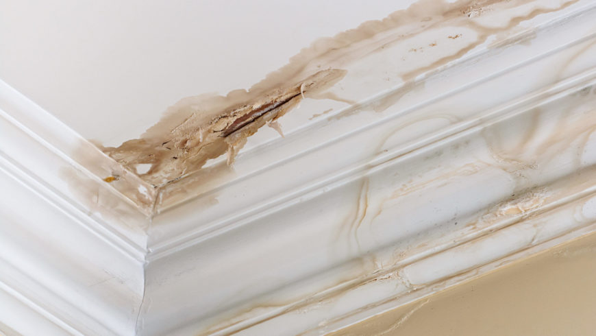 Preventing Water Damage In Your Home